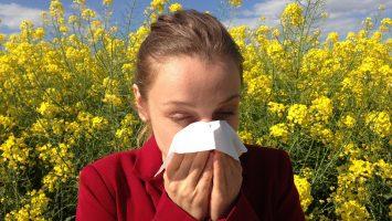 Allergie anche in casa